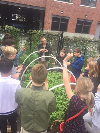 2017 6th grade visits Green Plate Special and Seward Park