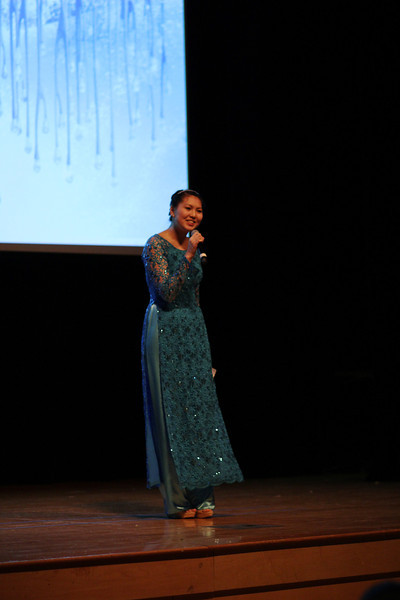2014 VSA Culture Show
