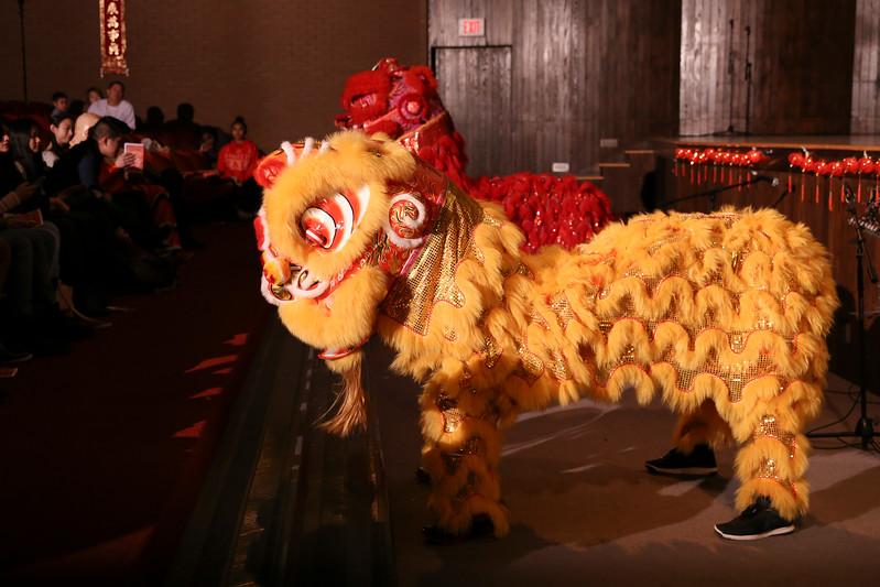 Chinese New Year Show