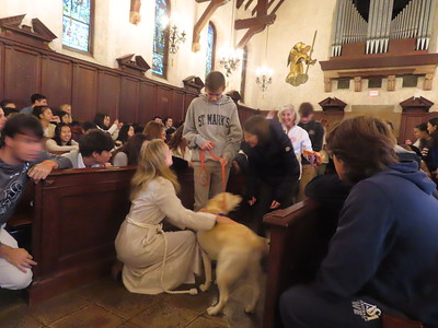 Blessing of the Animals 10.4.19