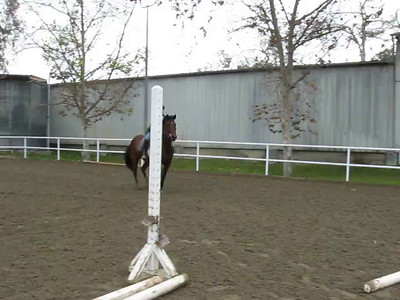 Cocoa jumping