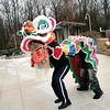 Asia Society Dragon Dance