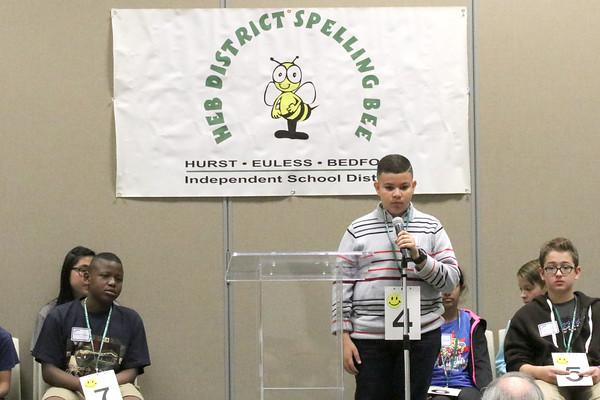 District Spelling Bee 2017