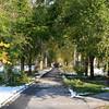 Elm Arch from Salem Street (toward Chapel Avenue)