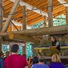 2014 SA Dippikill Wilderness Retreat