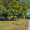 2017 Fall Foliage Candids