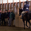 The UAlbany Equestrain Team is just one of the many great student groups available at the University at Albany.  Photographer: Danielle Dietrich
