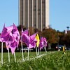 Oct. 9, 2020 - Pinwheel Project