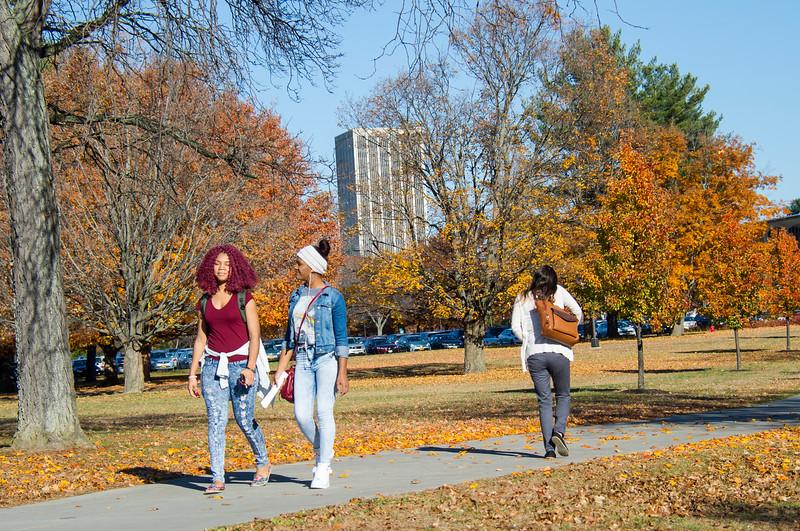 Main Campus Fall