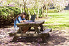 Studying in Azalea Garden