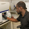 Babatunde Adeyemi, '15 (Queens), a biology major, interning at the Cancer Research Center. Photo: Mark Schmidt