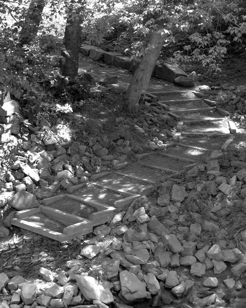Wooded Staircase<br /> <br /> May 24, 2006<br /> <br /> Susquehanna State Park, MD