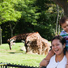 Toronto_Zoo_1519