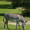 Toronto_Zoo_1614