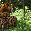 Toronto_Zoo_1689