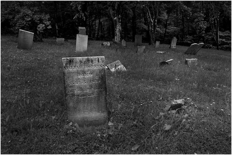 Berne NY Bradt Hollow Cemetery 1 BW June 2016