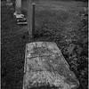 Berne NY Bradt Hollow Cemetery 7 BW June 2016