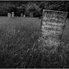 Berne NY Bradt Hollow Cemetery 18 BW June 2016