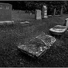 Berne NY Bradt Hollow Cemetery 9 BW June 2016