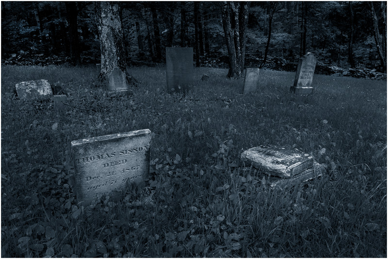 Berne NY Bradt Hollow Cemetery 2 DUO June 2016