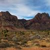 Mojave Desert California February 2007 Rocky Hills 5