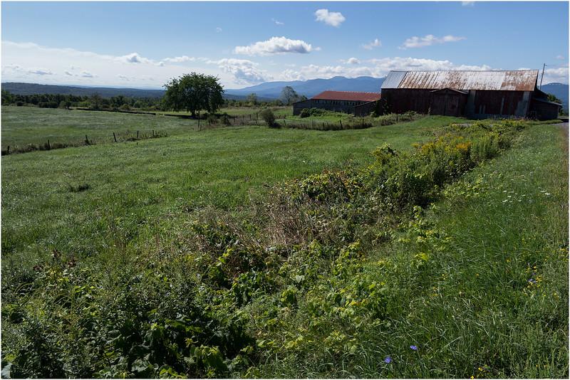 Medusa NY Farm and Catskills August 2012
