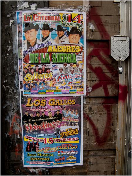 New York City November 2009 South Bronx Poster