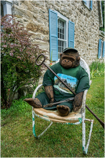 Hurley NY Stone House Day The Bear in the Yard July 2016
