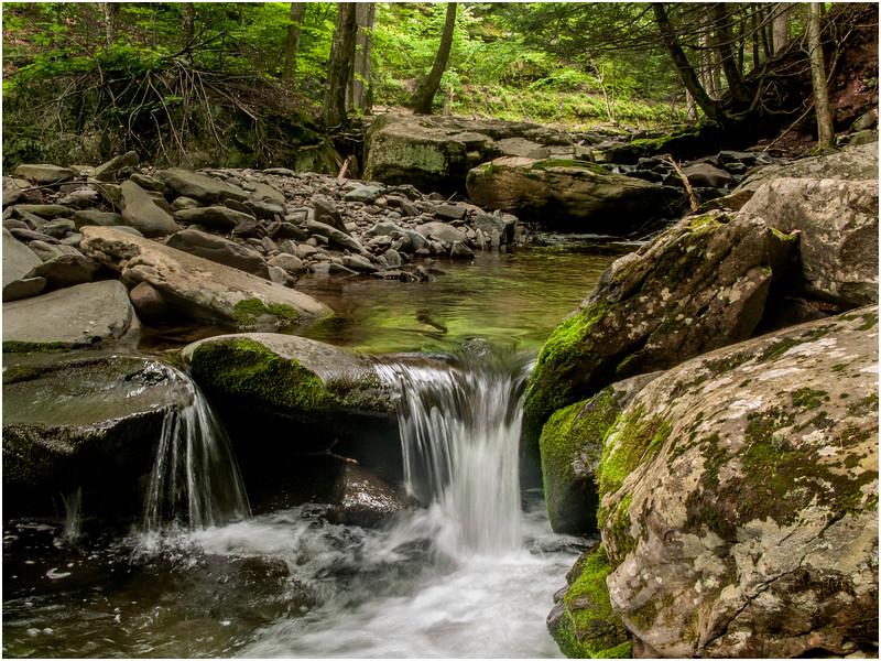 New York State June 2009 Kaaterskill Falls Stream 1