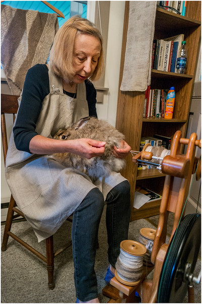 Hurley NY Stone House Day Spinning Bunny Parsonage 4 July 2016