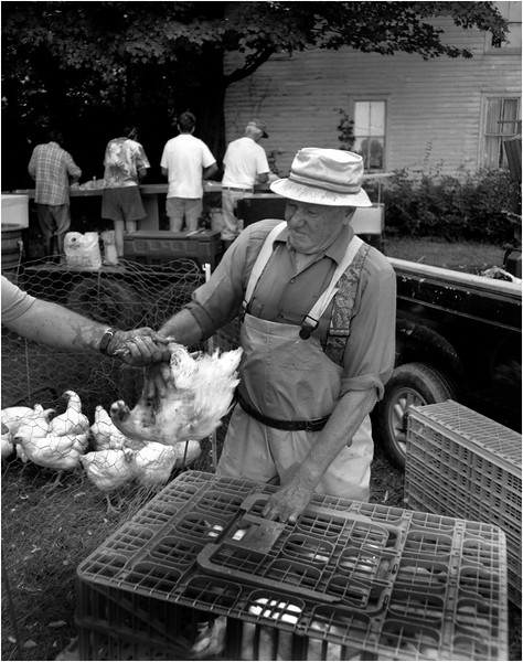 Middle Falls NY 2004 Chicken Processing2