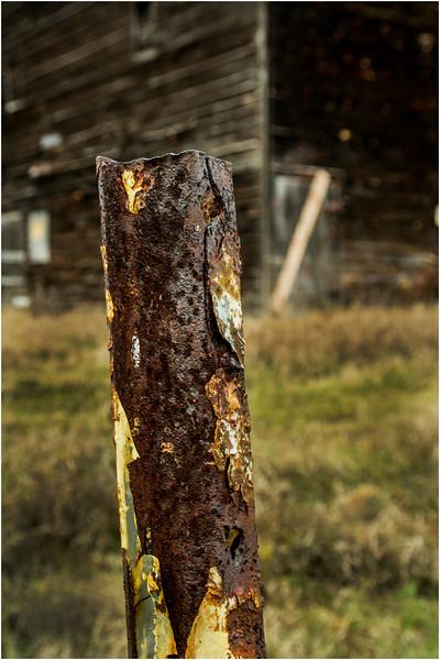 Slingerlands NY Krumkill Road November 2015 Fence 9