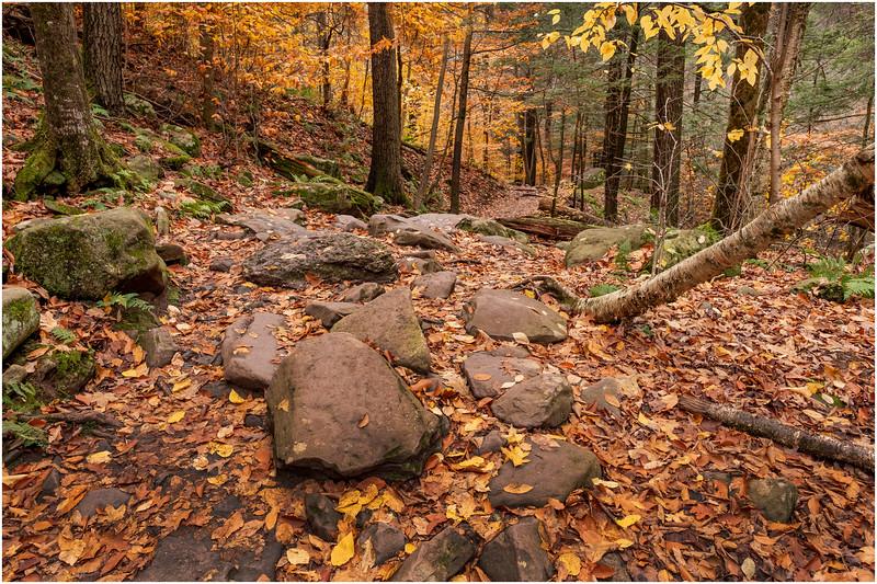 New York Catskills Kaaterskill Clove 3 October 2019