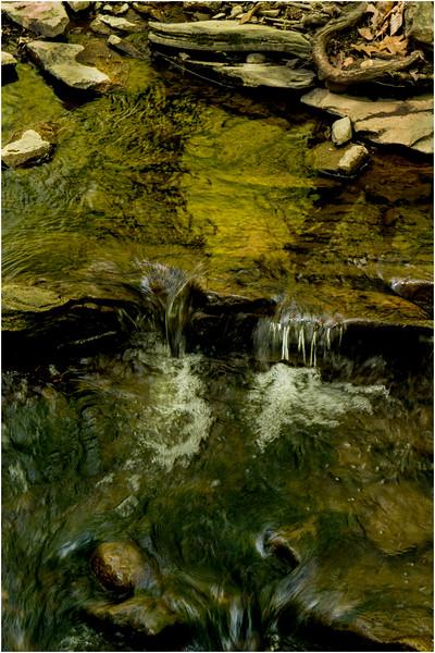 New Scotland NY Five Rivers May 2015 Stream 2
