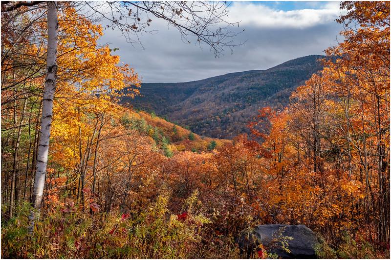 New York Catskills Kaaterskill Clove 5 October 2019