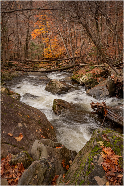 New York Catskills Kaaterskill Creek 12 October 2019