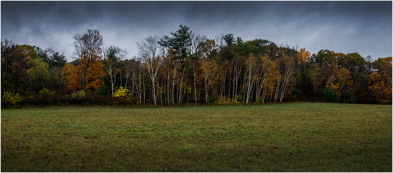 Voorheesville NY Rainy Day 41 October 2017