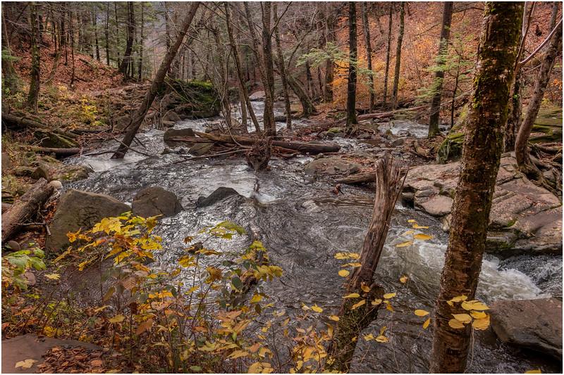 New York Catskills Kaaterskill Clove 4 October 2019