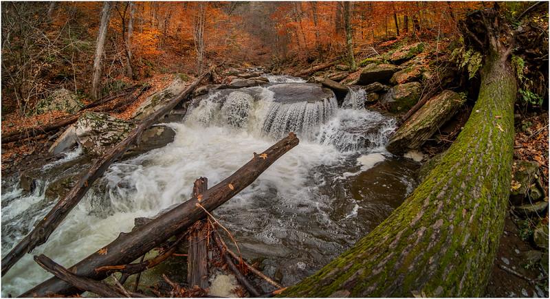 New York Catskills Kaaterskill Creek 17 October 2019