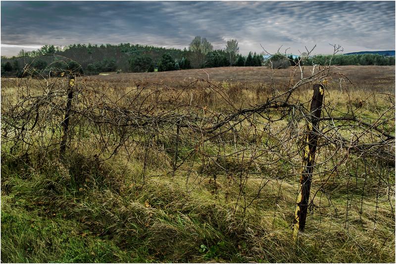 Slingerlands NY Krumkill Road November 2015 Fence 1
