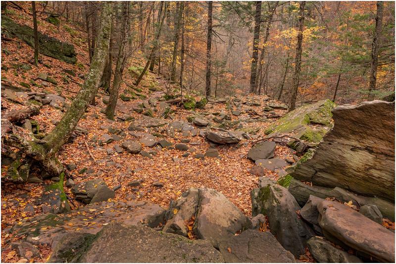 New York Catskills Kaaterskill Clove 1 October 2019
