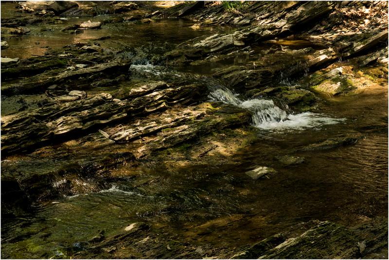 New Scotland NY Five Rivers May 2015 Stream 3