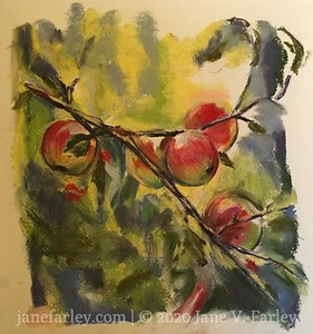 Study of  Apples
