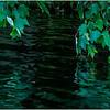 Grafton NY Long Pond 1 August 2016