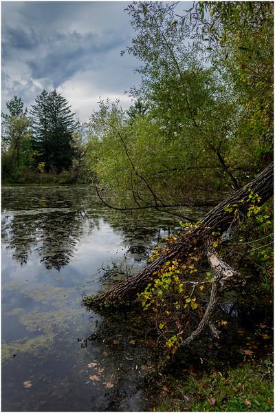 Slingerlands NY Five Rivers 104 October 2017