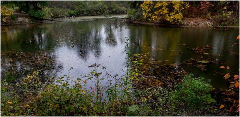 Slingerlands NY Five Rivers 54 October 2017