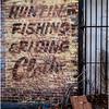 Troy NY Brick Hunting 2