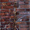 Troy NY Back Alley 16 Brick and Vine January 2017