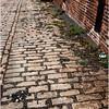 Troy NY  Brick Alley 3 2008
