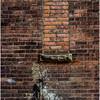 Glens Falls NY Brick 15 Bricked Window May 2016